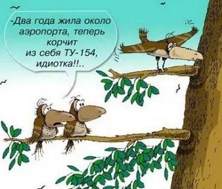 анекдоты из россии свежие читать бесплатно