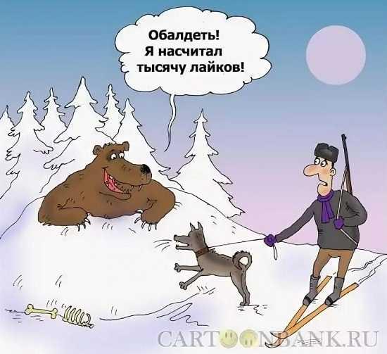 анекдоты про охотников на медведя