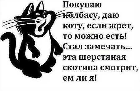 ржачный анекдот про животных
