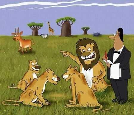 свежие анекдоты про льва