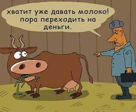 анекдоты про село