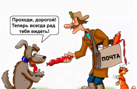 анекдоты про собаку аа