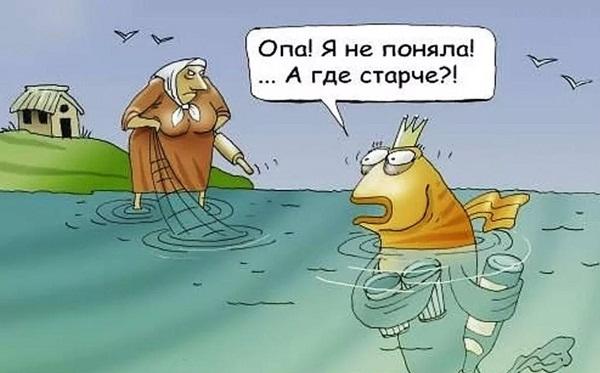 анекдоты про золотую рыбку АА (3)