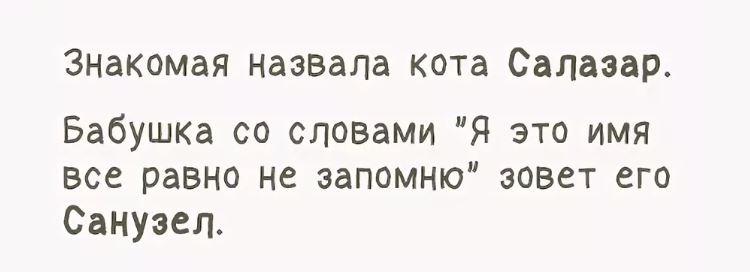 юмористические рассказы АА (2)