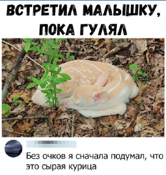 Смешные картинки (7)