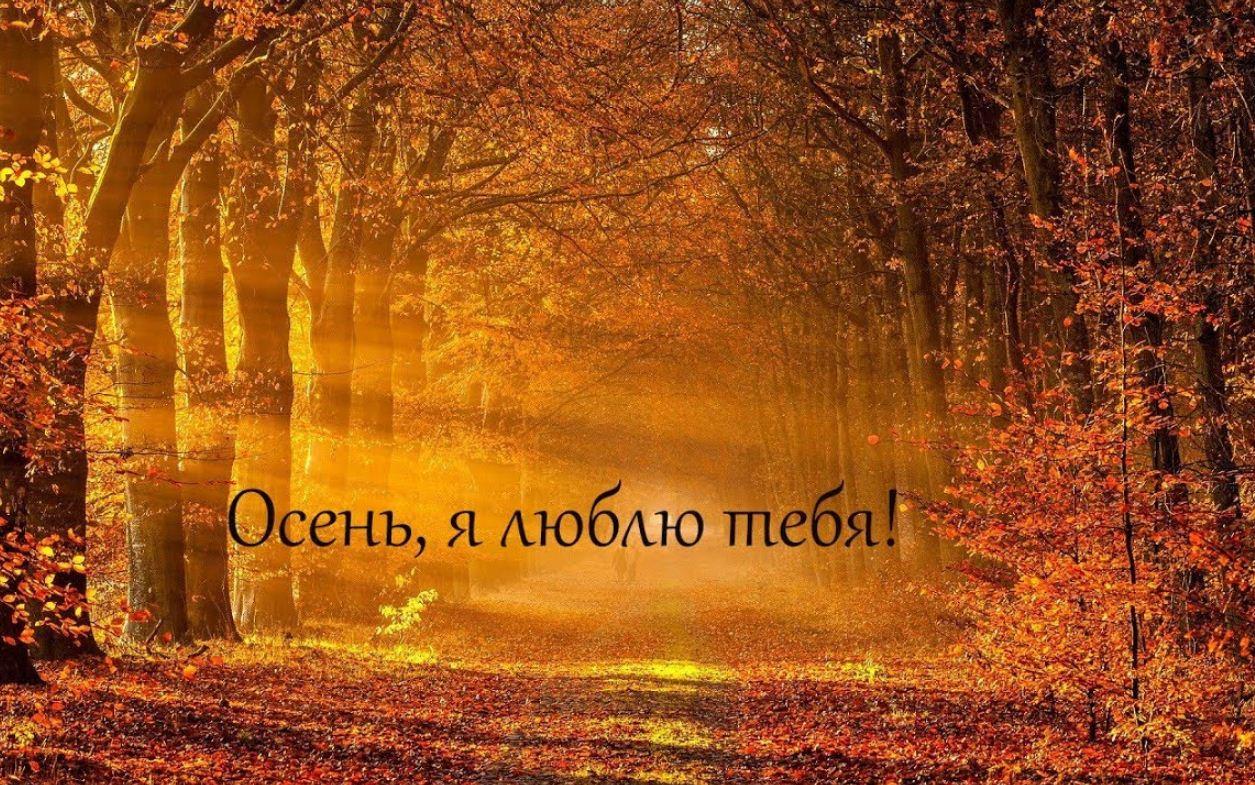 красивые стихи про осень р (2)