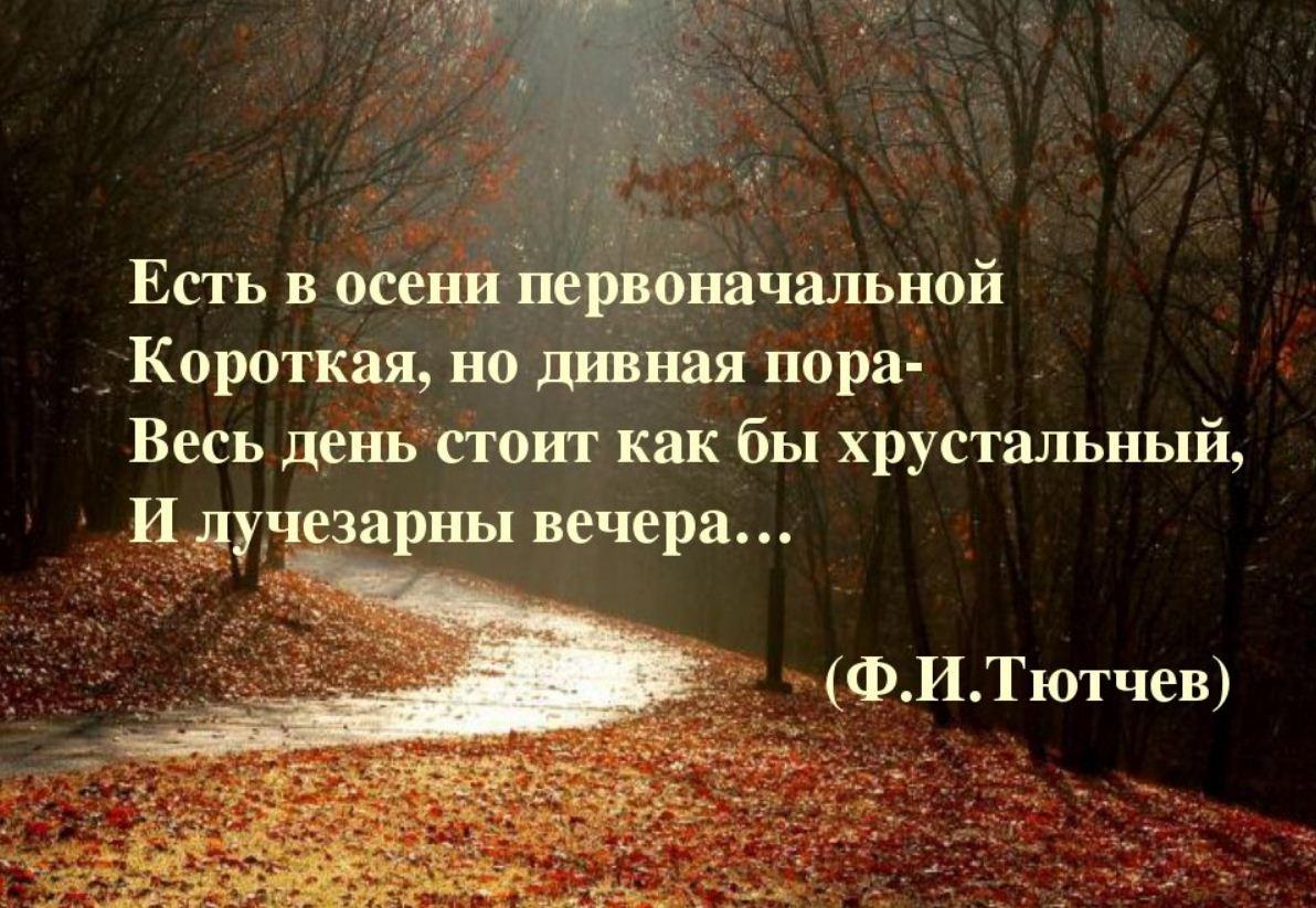 красивые стихи про осень р