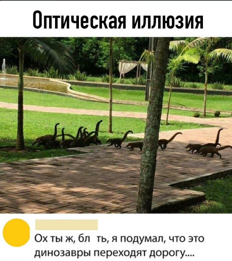 смешные картинки с надписями (17)