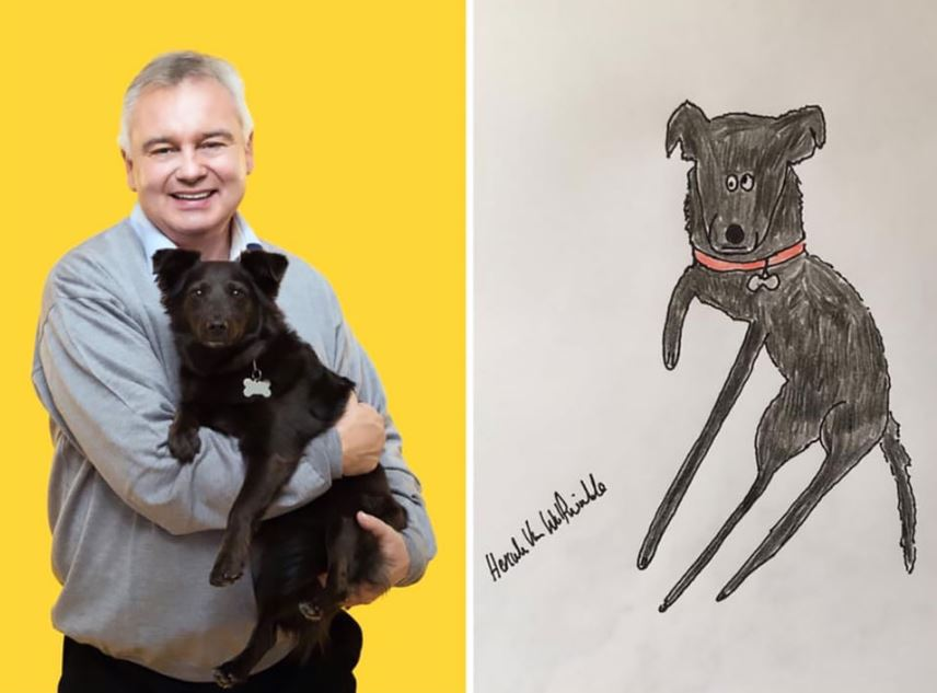 Нетрадиционные портреты домашних животных — рисунки по фото