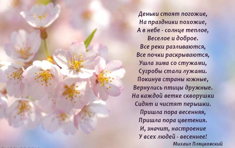 стихи про май
