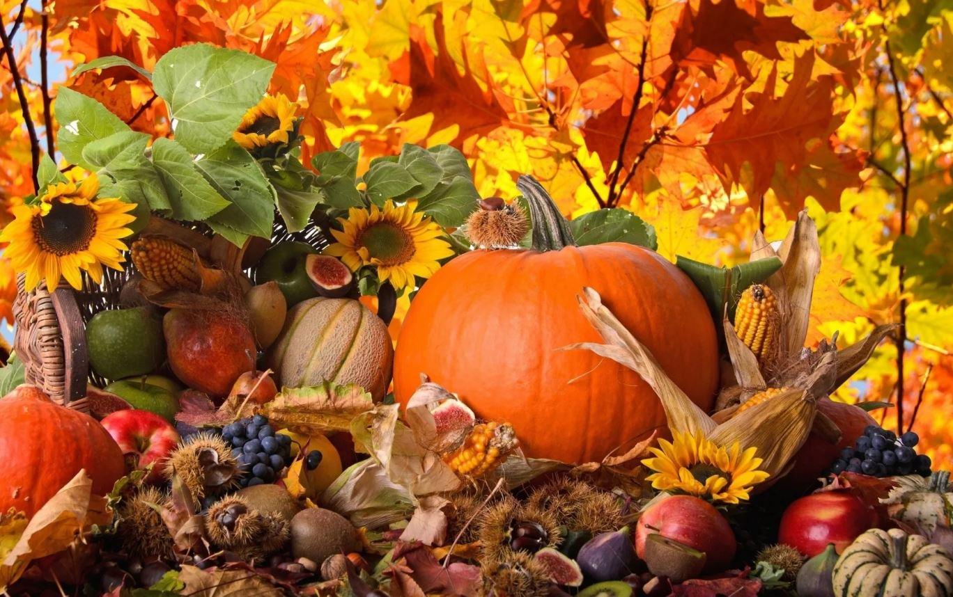 стихи про осень (2)